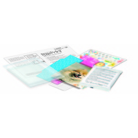 Paw Print Making Kit