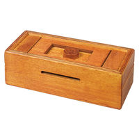 Mysterious Puzzle Box