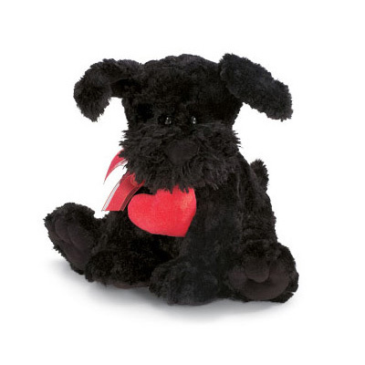 Licorice The Dog