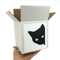 Cat Lover Gift Box