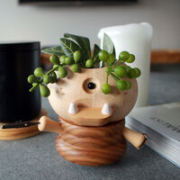 Cyclops Wooden Plant Container
