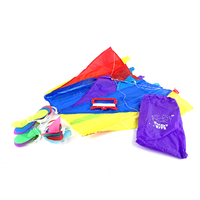 Pocket Kite